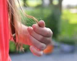 Perte de cheveux: la poudre de cheveux est-elle efficace ?